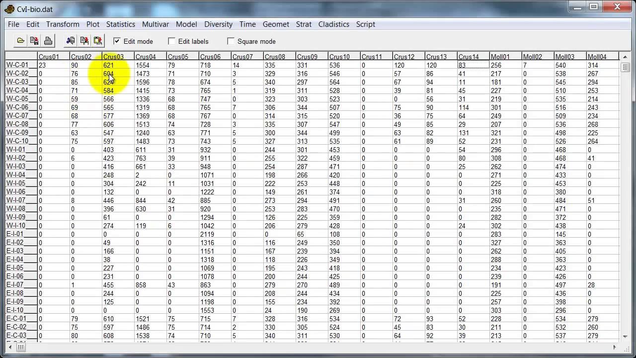 Past 2 data import and editing youtube nvjuhfo Images