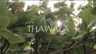 Masha Mapenzi - Thawala