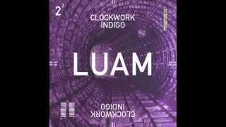 Clockwork Indigo (Flatbush Zombies & The Underachievers) - LUAM
