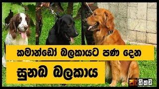 Pathikada Sirasa TV With Bandula Jayasekara 16th Of May 2019, explosive detection dogs Pro.01 Thumbnail