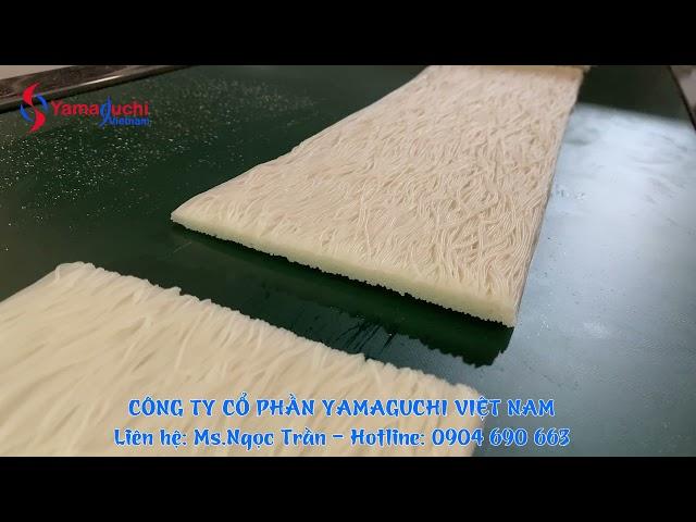 Dây chuyền sản xuất bún phở khô tự động - Yamaguchi