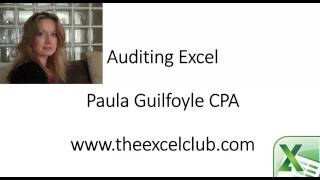 Auditing Excel Spreadsheets