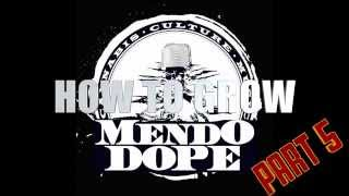 """How to grow """"Mendo Dope"""" from Seed - Part 5 (HARVEST)"""