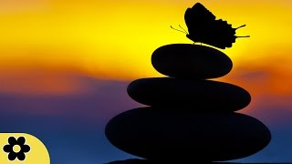 6 Hour Zen Meditation Music: Nature Sounds, Relaxing Music, Soothing Music, Relaxation Music ✿2445C
