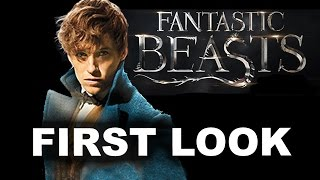 Fantastic Beasts 2016 First Look - Review aka Reaction - Beyond The Trailer