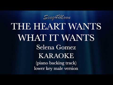 The Heart Wants What It Wants (Piano Karaoke instrumental) lower key male version Selena Gomez