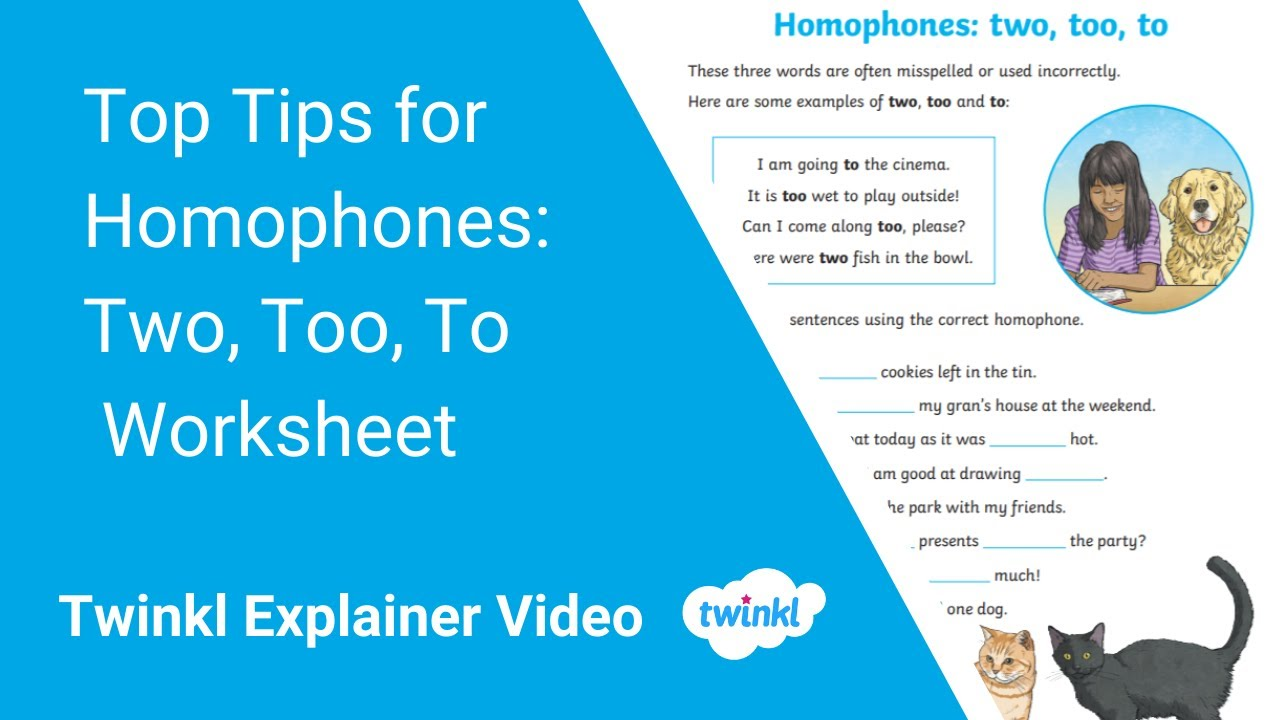 Homophones To Two Too Worksheet  English Resources For To Too Two Worksheet