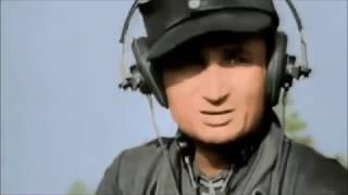 Хроника Войны: Курская битва
