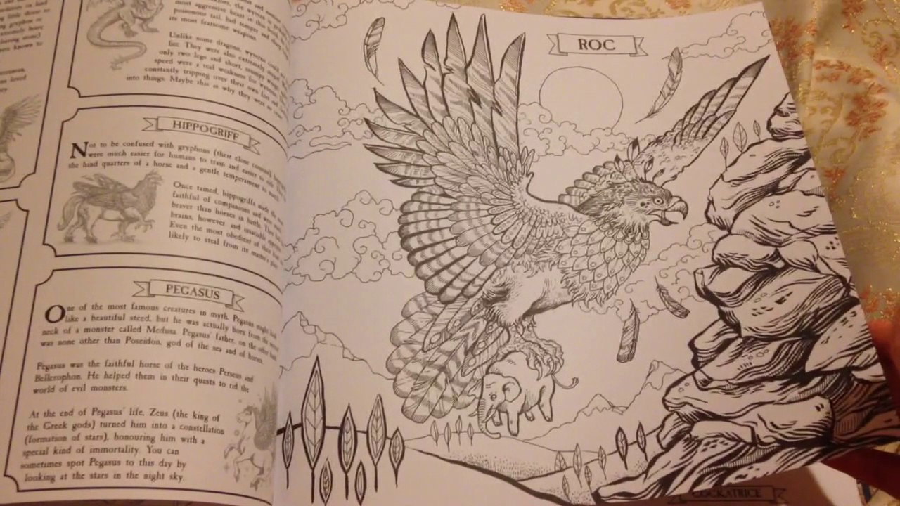 The Book Of Beasts Colour And Discover Colouring Book flip through ...