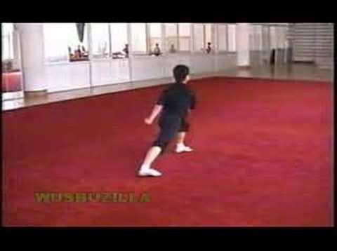 Nanquan Jibengong (2000 Training @ Guangdong)