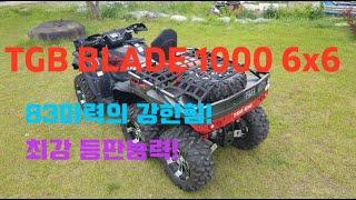 ATV  TGB BLADE 1000 6x6 (사륜바이크…