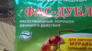 видео Как травить тараканов борной кислотой: избавляемся от насекомых дешевым и простым средством