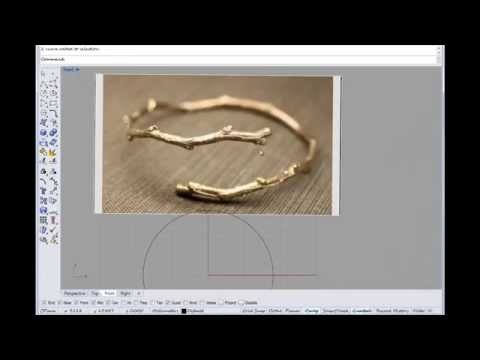 Basic Rhino tutorial on making an organic branch ring with Rhino Cad and Sculptris