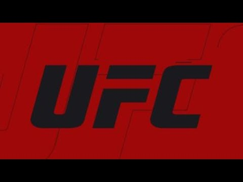 Intense UFC fight ! Big Finish!