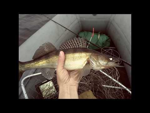 Осенняя рыбалка на Пироговском водохранилище