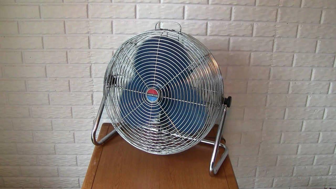 Modell Fan