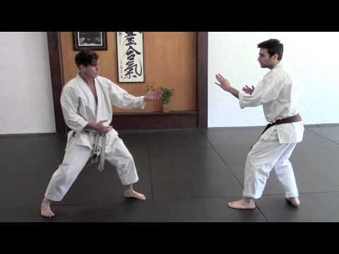 Back Kick - Ushiro Geri and Defense to Back Kick