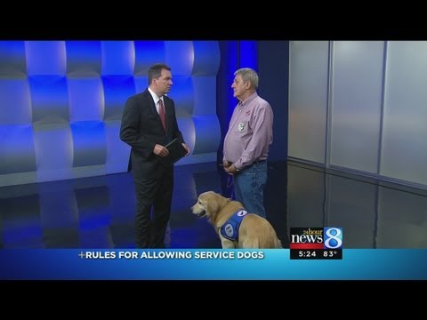 Service Dog Turned Away At Lansing Zoo
