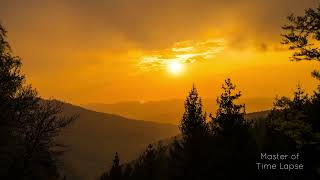 284 Time Lapse Sunset Silhouette Black Forest | Zeitraffer Schwarzwald Sonnenuntergang Orange 4K