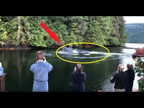 Люди заметили как вода внезапно забурлила! Они не поверили своим глазам, когда увидели...