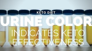 How Urine Color Can Reveal If the Ketogenic Diet Is Working