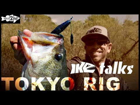 The Tokyo Rig for Bass | Ike Talks Uses