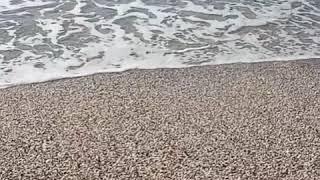 хотите жить у моря?