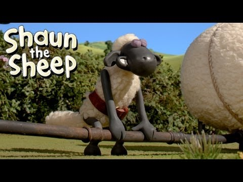 Shaun the Sheep - Championsheeps - Weightlifting (OFFICIAL VIDEO)