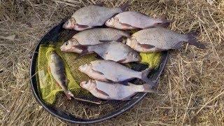 Ловля на фидер ранней весной на течении. Весенняя рыбалка 2020