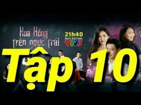 ( Review ) Hoa Hồng Trên Ngực Trái