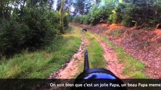 Approche sanglier Alsace 2013 GOPRO HERO 3