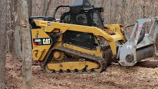 Cat 299 and Denis Cimaf Action