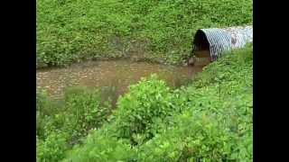 SEWAGE SPILL INTO LAKE WYLIE - Tega Cay Water Service/Utilities Inc - 05/06/13