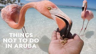 10 Things NOT to Do in Aruba