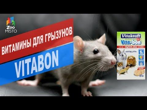 Витамины для грызунов Vitabon  | Обзор витамины для грызунов Vitabon