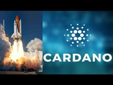 Sucsessful Cardano ADA TestNet! Is $Cardano The Most Undervalued Crypto?