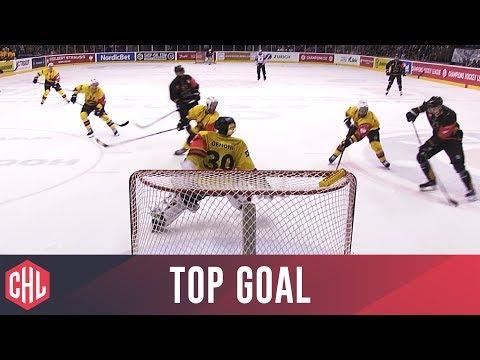 Alexander Mokshantsev - Nottingham Panthers | Top Goal