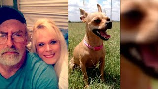Woman Claims Her Fiancé Screamed And Called Her Names During Search For Missing Dog