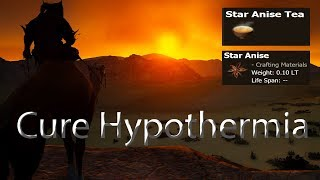 Black Desert Online Star Anise Tree Location/How to cure Hypothermia at the night