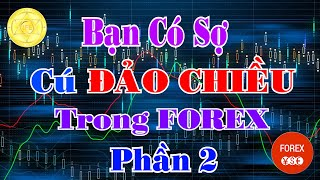 Trader Sợ Hãi Nhất Điều Này Còn Bạn có Sợ Cú Đảo Chiều trong Forex Không? phần 2