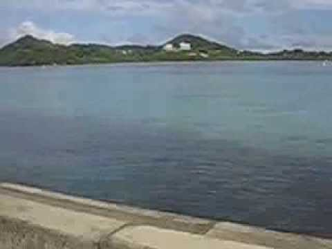 Palau City Guide