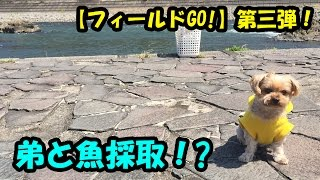 川へGO!【フィールドGO!第三弾】【大分グッピーFC】