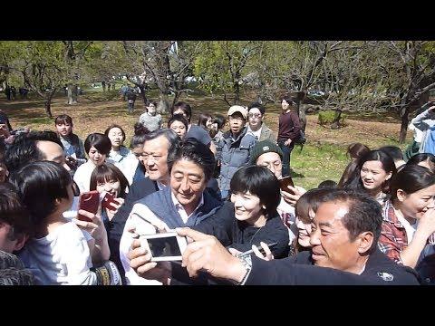 安倍総理、代々木公園で桜を鑑賞 花見客から「頑張ってください」の声 主婦達に囲まれ写真も