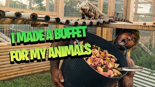 MADE A BUFFET FOR MY ANIMALS | THE REAL TARZANN