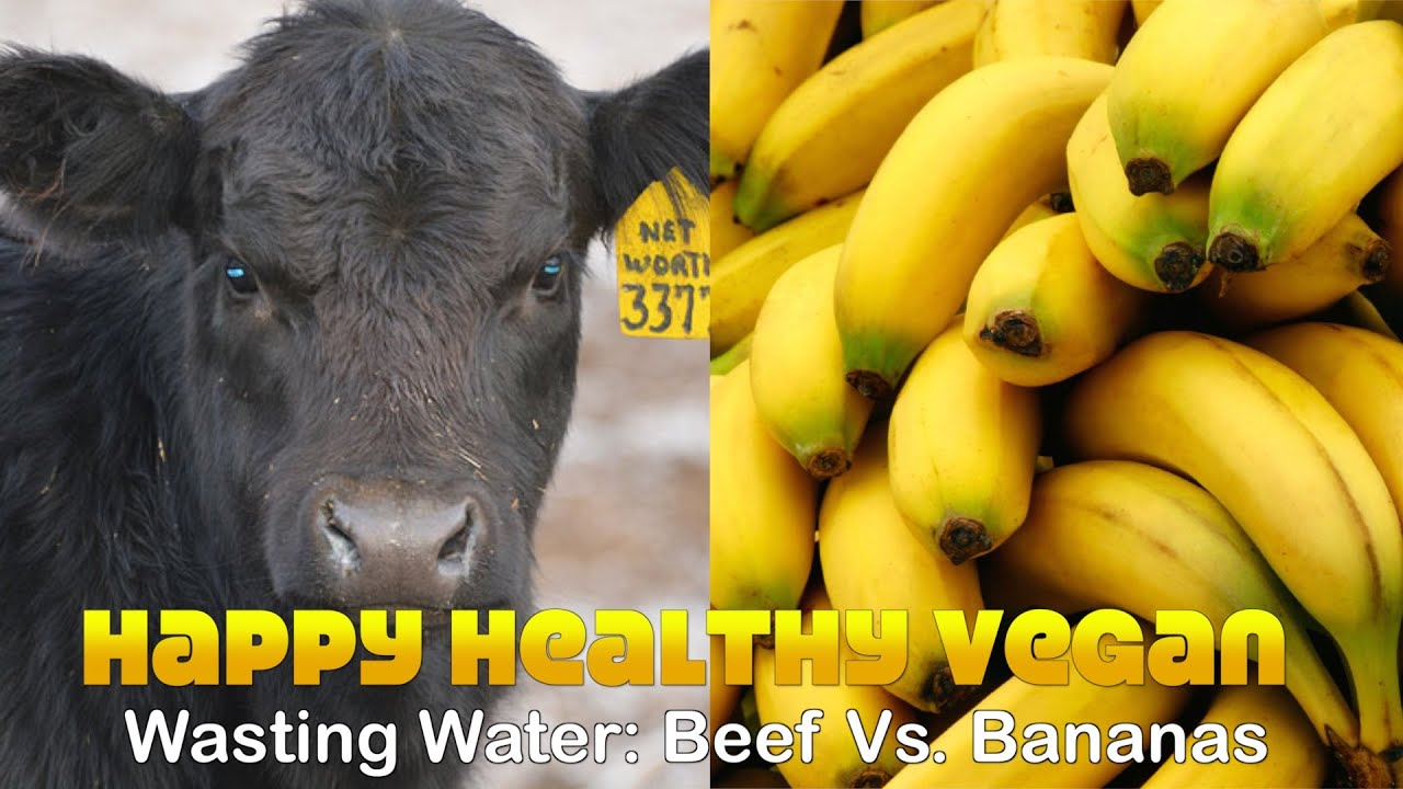 Beef vs Bananas: Which Wastes More Water?