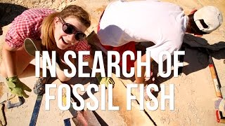 In Search of Fossil Fish