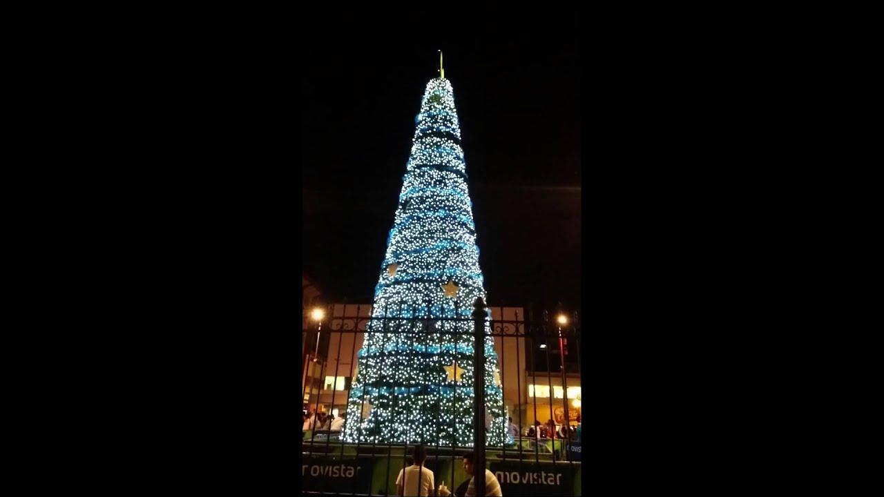 Arbol De Navidad / Christmas Tree San Jose Costa Rica