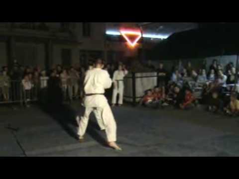 Feux de la Saint Jean Saint Hippolyte 2009 - Vidéo...