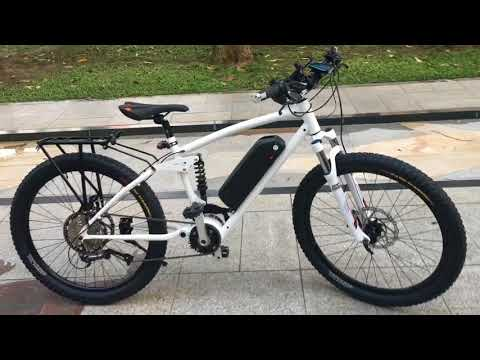 2.4KW Elite MTB With The Rear Rack