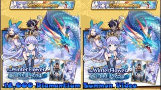 Dragalia Lost- 18,000 Diamantium The Winter Flower and the Tidal Power